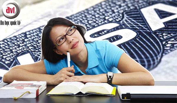 Nhược điểm của việc tự xin visa du học Mỹ