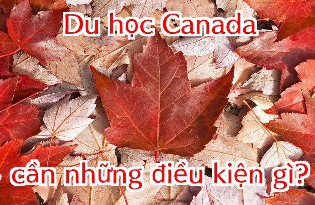 Điều kiện du học Canada 2019 cần những gì