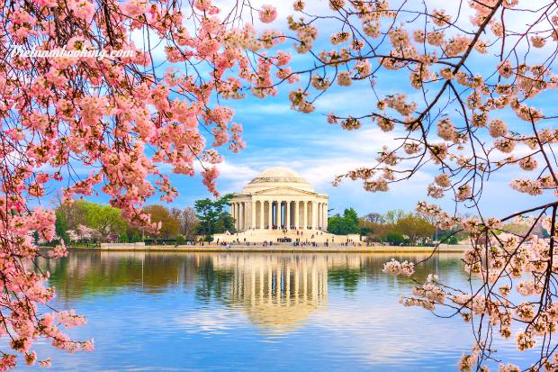 Tour du lịch Mỹ 8N7Đ: Chiêm ngưỡng vẻ đẹp Washington D.C | khám phá New  York –